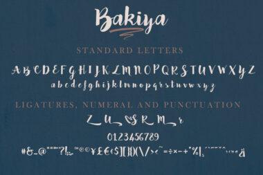Bakiya preview pic 02 Bakiya | Handwritten Brush Font