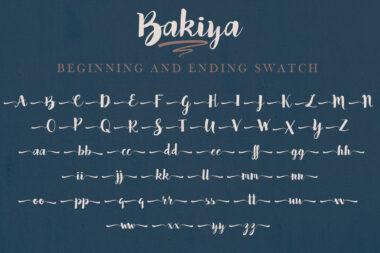 Bakiya preview pic 03 Bakiya | Handwritten Brush Font