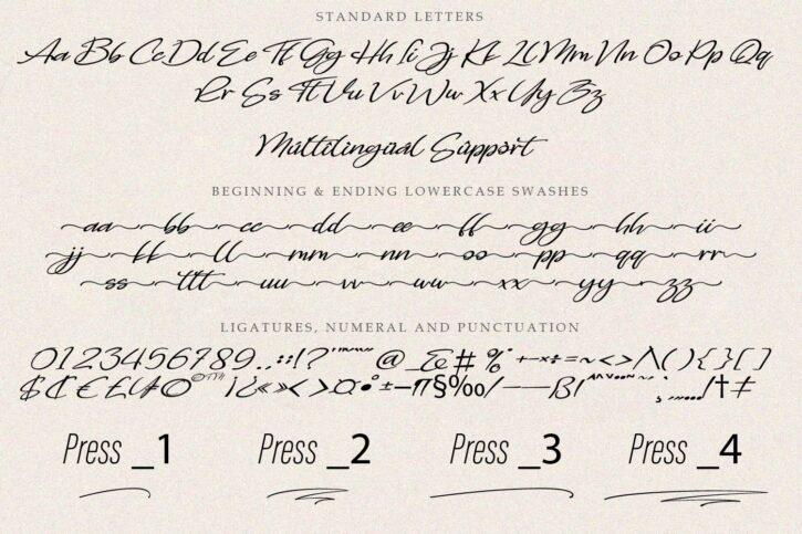 Preveiw 02 Chorasign | Signature Handwritten Script